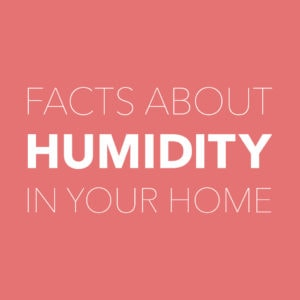 facts about humidity indoor air quality